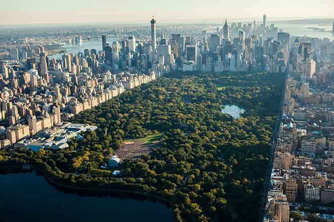 Man-cave? That's so last year. Real men build a 550 hectare Man-forest. The Molai forest is now over one and a half times the size of New York's Central Park! (Photo:Wikimedia)
