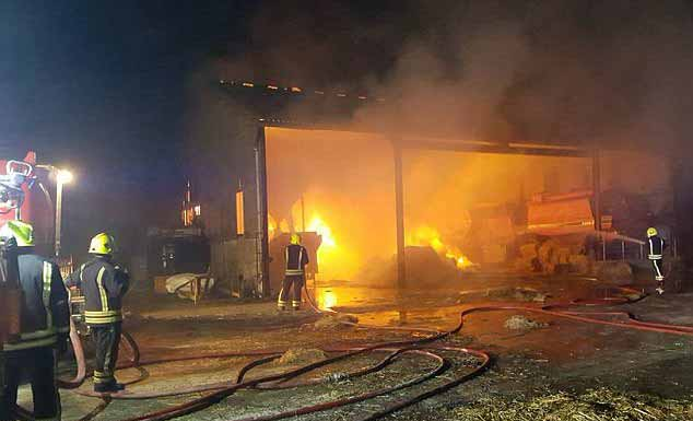 The 'Pewsey 18' were saved from this barn fire by firefighters from Pewsey Fire station. (Photo: Pewsey Fire Station)