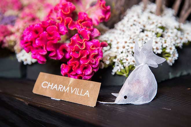 The Charm Villa goldfish tea bag can sell for up to $20 per tea bag in America. (Photo: Facebook/Charm Villa)