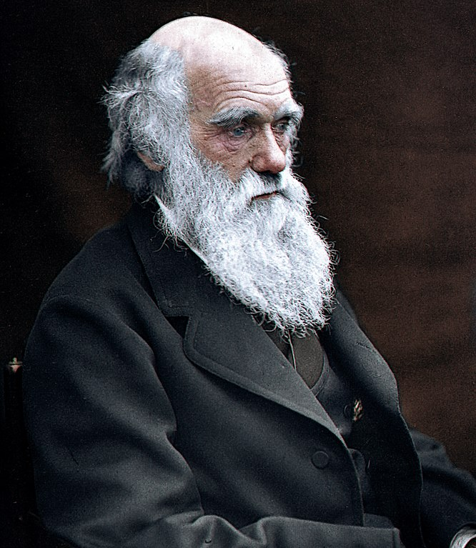 "Charles Darwin suffered from terrible motion sickness on his voyage to the Galapagos Islands. In his book 'Voyage of the Beagle' (1839) he wrote - ""If a person suffer much from sea-sickness, let him weigh it heavily in the balance. I speak from experience: it is no trifling evil which may be cured in a week."" (Photo: Wikimedia/Julius Jääskeläinen)"
