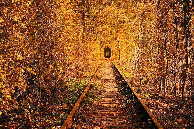 The Tunnel of Love near Klavan, Ukraine. (Photo: Wikimedia/greentourua)