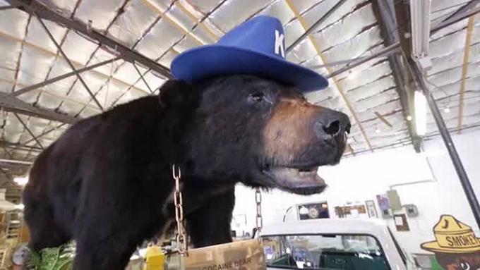 Pablo Eskobear AKA the cocaine bear now resides in the Kentucky for Kentucky Fun Mall (Photo: Youtube)