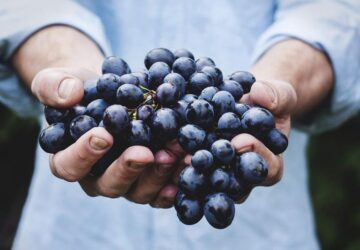 How Are Cotton Candy Grapes Made? Designer Fruit Alchemy