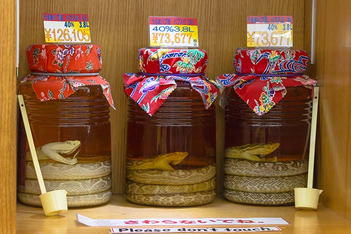 Alcoholic Awamori with snakes inside, sold at the liquor shop in Naha city, Okinawa Prefecture, Japan. (Photo: Shutterstock)