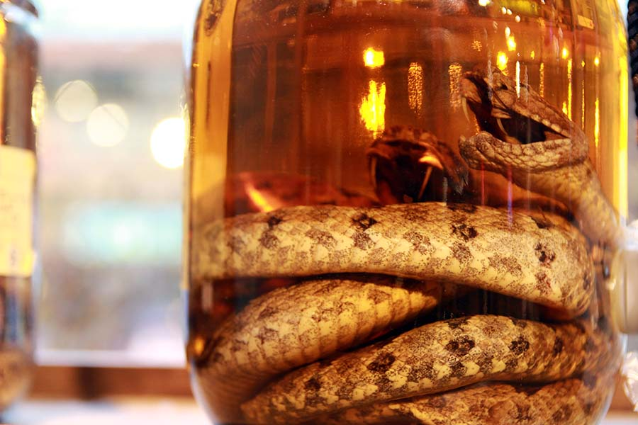 Okinawa Prefecture, Japan Alcoholic Awamori with snakes inside, sold at the liquor shop in Naha city, Snake wine or snake whiskey (Photo: Shutterstock)