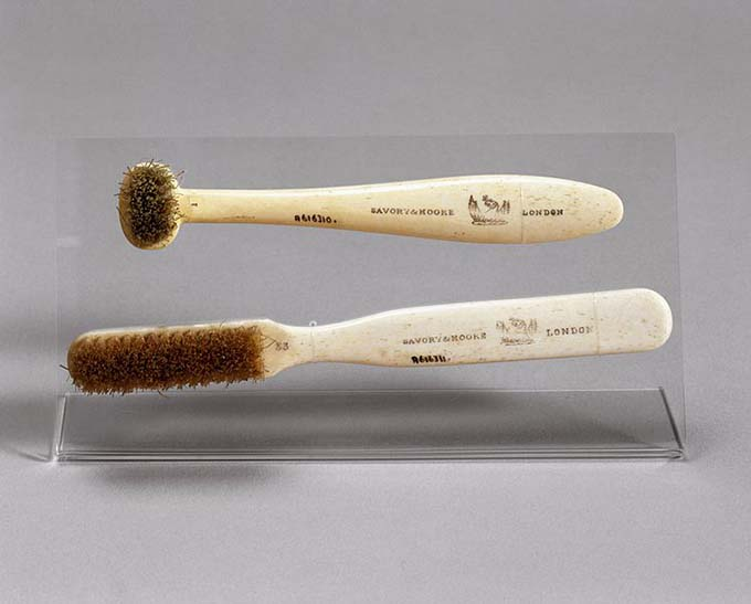 Toothbrush with horsehair bristles, London, England, 1870-19 (Photo: Wikimedia/Wellcome Images)